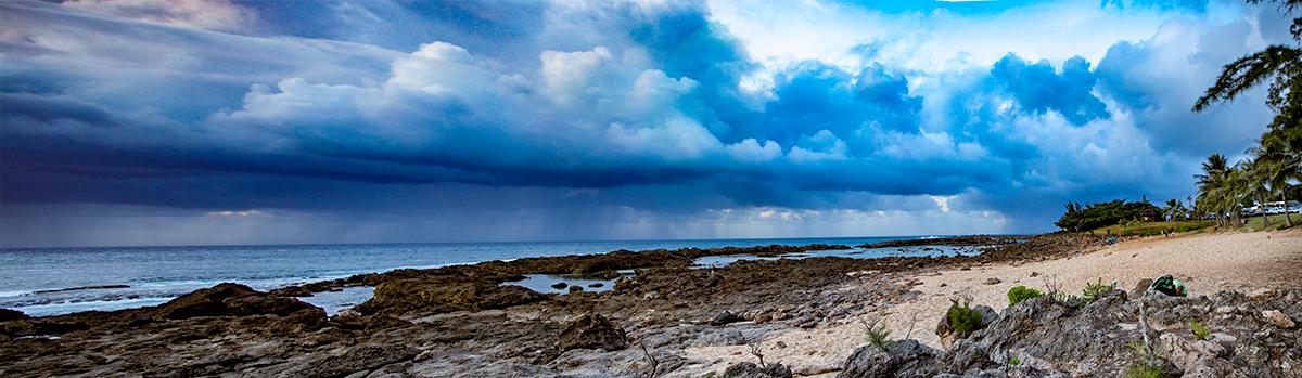Sharks Cove - 10/23/2016